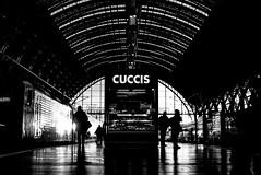 Central Station (Picturepest) Tags: schwarzweis schwarzweiss sw blackwhite bw blackandwhite schwarzweisfotografie schwarzweissfotografie monochrome noir twit twart einfarbig station bahnhof train