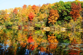 Fall Colors and Reflections