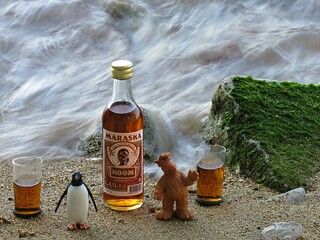 Alf And Penguin Brum Drink All My Rum  シ