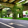 Concrete jungle, Chengdu (Mark Tindale) Tags: environment sichuan china cooling stark concrete freeway chengdu overpass road plants green greenway overhead roadway