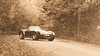 Vermont, 1966. (at1503) Tags: usa vermont shelby cobra vintage forest autumn 1960s 1966 granturismo granturismosport