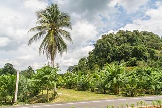 grotte khao kob trang - thailande 16