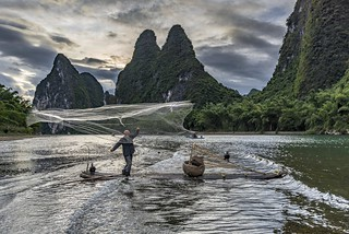 *The Li River Fisherman*