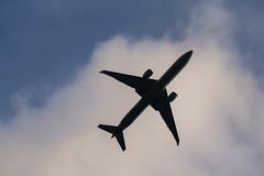 Jetstream (341/365)