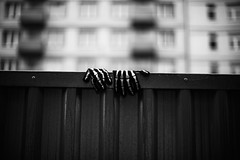 Mittens 92.365 (ewitsoe) Tags: gloves leftbehind forgotten mittens ewitsoe canon eos6dii 50mm12 lseries street urban monochrome winter autumn cold zima poznan poalnd cityscape bnw blackandwhite 92 365 poland