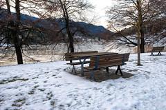 Al lago di Serraia (STE) Tags: baselga di pinè trento trentino inverno winter freddo cold lago serraia lake ghiacciato frozen ghiaccio ice fuji fujifilm xt20 panchina bench panchine benches neve snow