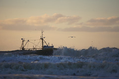 (Wöwwesch) Tags: seagull fishing ocean shoreline waves northsea sunset boat sky ngc sonyalpha sony ilce6000