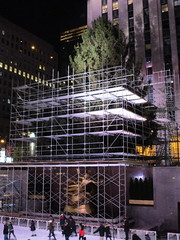 2017 Christmas Tree Rockefeller Center NYC 3628 (Brechtbug) Tags: 2017 christmas tree rockefeller center before lights 11112017 nyc 30 rock new york city standing up above ice rink with snow shoveling workers skating holiday decoration ornaments night lites light oversize load ornament prometheus gold mythological statue sculpture fountain fountains scaffolding scaffold pre thanksgiving