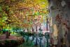 Nostalgia de tí. Caravaca de la Cruz. (Miguel Angel SGR) Tags: otoño fall autumn automne autunno nature naturaleza natural luz light color colorful colors colour colorido arboles arbres tree trees river rio agua water texturas texture trips textura textures detalles details detalle paisaje landscape landschaft landscapes beauty feuilles leaves hojas bellez belleza travel trip turismo tourism touring tournament tourist tour viajes viajar reflejos reflections nikon nikond3000 d3000 miguelangelsgr miguelonphotography caravaca caravacadelacruz murcia españa spain europa europe