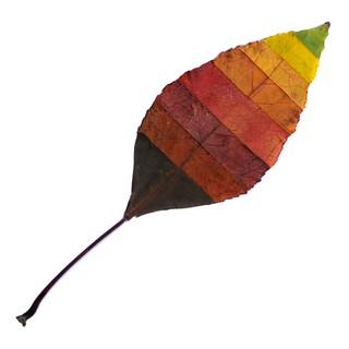 fall colors (brescia, italy)