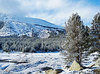 Spring Snow on Tulumne Meadows, Yosemite 2015 (inkknife_2000 (8.5 million views +)) Tags: yosemitenationalpark california usa landscapes mountains snowonmountains cahwy120 tiogapassroad dgrahamphoto snow snowontrees easternsierranevada tuolumneriver