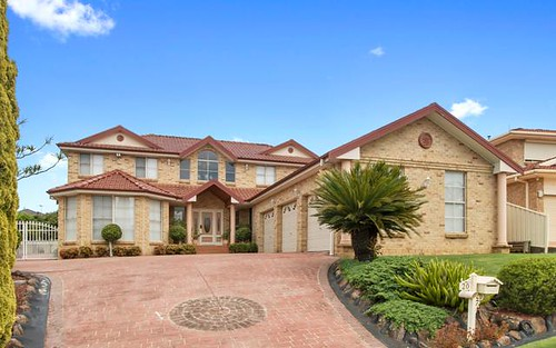 20 Richard Crescent, Cecil Hills NSW