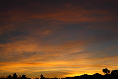 Sunset 11 12 17 #09 (Az Skies Photography) Tags: sun set sunset dust twilight cloud clouds sky skyline skyscape red orange yellow gold golden salmon black rio rico arizona az riorico rioricoaz arizonasky arizonaskyline arizonaskyscape arizonasunset november 12 2017 november122017 111217 11122017 canon eos 80 canoneos80d eos80d canon80d