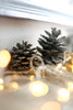 13999 (chloewilkinson2) Tags: christmas glitter lights decorations bokeh 50mm festive home interior detail snowflake red silver gold pinecone