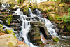 Discover Virginia Water (gazelaf1) Tags: england lake surrey virginiawater waterfall forest park