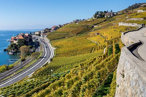 Vignobles en terrasses - Lavaux - 15 oktober 2017