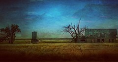 A lonely stretch... (Sherrianne100) Tags: abandoned rural barn silo bleak lonely texas