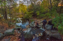 1338__0633FLOP (davidben33) Tags: brooklyn 718 ny quotnew yorkquot quotprospect parkquot autumn 2017 fall trees bushes leaves lake pets gooses ducks water sky clouds colors yellow green blue people quotstreet photosquot