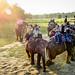 Tourists starting their elephant safaris