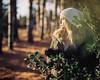 Evening Light. (kenneth.pelczar) Tags: soul living photography fun america usa newyork longisland green summer fall water beauty nature color negative 400asa f24 105mm 2017 camera film colors grain ishootfilm iso400 portra400 400 kodak kodakfilm analogue 6x7 pentax pentax6x7