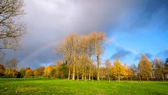 Rainbow (Jeannette Maandag) Tags: presikhaaf arnhem holland netherlands herfst groothoek wideangle kleuren regenboog sky lucht rainbow fujifilm fujixt20 blauw