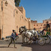 Horse-drawn Carriage in Marrakesh