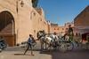 Horse-drawn Carriage in Marrakesh (jennifer.stahn) Tags: travel travelphotography marokko morocco marocco marrakech marrakesch marrakesh el badi elbadi palace palast pferdekutsche horse carriage bluesky stork storch daily nikon jennifer stahn
