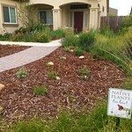 Front yard with sign - James Brugger - edited thumbnail