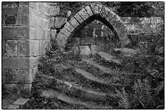 Day #3587 (cazphoto.co.uk) Tags: project365 beyond3288 261017 panasonic lumix dmcgx8 panasonic1235mmf28lumixgxvarioasphpowerois 2017th13 ancient arch cistercian jervaulx jervaulxabbey mono northyorkshire ruin steps architecture monochrome