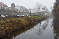 Foggy day (:Linda:) Tags: germany thuringia town hildburghausen park baretree tree reflection townwall mist