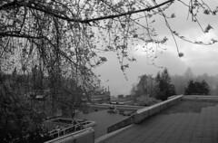 SFU Mist (jvde) Tags: 3570mmf3345nikkor burnaby blackandwhite clouds film gimp nikonfe sfu fujicolor
