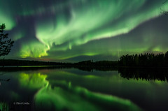 Aurora borealis (grus_p) Tags: auroraborealis northernlights light sky night nightscape aurorastorm october lake reflections nature water silhouette silence beautyofnature luminanceboréale finland southernsavonia