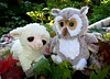 Liam and Hazel make an early morning escape! (Bennilover) Tags: liam lamb hazel owl toys animals leaves fall autumn november playing blanket morning fun explore
