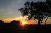 Amanhecer em Brasília (Luiz Carlos Targino Dantas) Tags: nascerdosol sunrise brasília df capitalfederal brasil street urban canon
