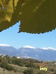 Panorama con sipario d'autunno. (esterinaeliseo1) Tags: versantecalabro pollino justnature natura foglie neve montagna autunno landscape panorama