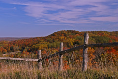 Happy Fence Friday (Wonder Woman !) Tags: ngc autumn fence michigan fall