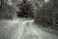 Dirt Road (RickLev) Tags: 5d ancient canon cottagevacation history levesque markii photo photographer rick scotland sunny tiltshift trip vacation beautiful image old photog photography sunshine vintage
