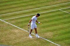Djokovic (charlottehbest) Tags: charlottehbest england summer 2017 uk wimbledone sport sports tennis lta