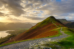 Cat Bells (littlenorty) Tags: borrowdale catbells cumbria derwentwater england europe fujixt2 gear heather hill keswick lake lakedistrict landscape nature path plants skelgillbank sunrise type unitedkingdom fuji1655