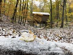 Color Tour … November findings IV (Ken Scott) Tags: snow fall autumn kenscott colortour coveredbridge sleepingbeardunesnationallakeshore iphoneography