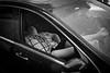 | Boyle Heights, CA | 2017 ([DV8] David Patrick Valera) Tags: reddot summilux50 street humancondition leicam10 davidpatrickvalera dv8street dv8 leica wetzlar summicron35 otiscollegeofartdesign streetphotography boyleheights photographers eastla rangefinder leitzpark otis leitz