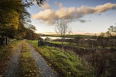 Loch Kindar (TrotterFechan) Tags: loch kindar newabbey autumn path lake trees