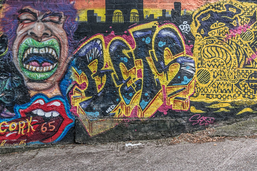 EXAMPLES OF STREET ART IN CORK CITY [PHOTOGRAPHED 2017]-133914