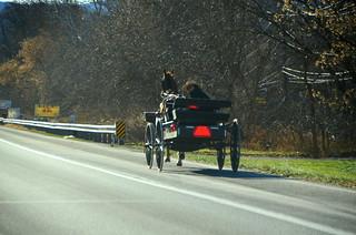 amish / horse and wagon