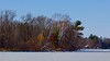Catching the last Autumnal colour, with the first Winter Snow  and Ice on the lake. (Bob's Digital Eye) Tags: 2017 blue bobsdigitaleye canon canonefs55250mmf456isstm flicker flickr lakeice lakeinwinter lakescape lakeshore november11th t3i trees winterinmn laquintaessenza snow forest