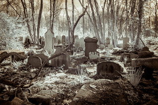 Tower Hamlets Cemetery (Adventures in Infrared)