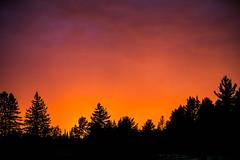Evening Glow (Jenna.Lynn.Photography) Tags: sun sunset glow evening color colorful sky clouds trees silhouette treeline tree horizon black orange purple pink nature cold wisconsin canon light eos 5dmarkiii contrast skyline canon5dmarkiii canon70200f28lll flickr beauty scenery summer settingsun golden goldenhour sunrise morning sunsetsunrise