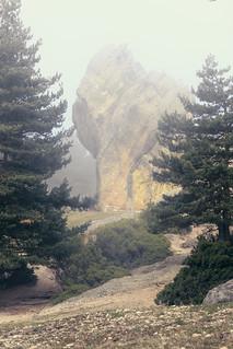 Día de Niebla en Castroviejo ( Vertical )