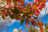 Horticultural Hall, Halifax Public Gardens (julesnene) Tags: canada canon1635mmf4lisusm canon5dmarkiv halifax halifaxpublicgardens juliasumangil novascotia autumn autumnleaves fall garden julesnene nature travel wideangle mapleleaves mapletree ca