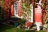 Automne (chez m'man) (Loanne Lo ou Lolo) Tags: maison campagne rouge automne chat